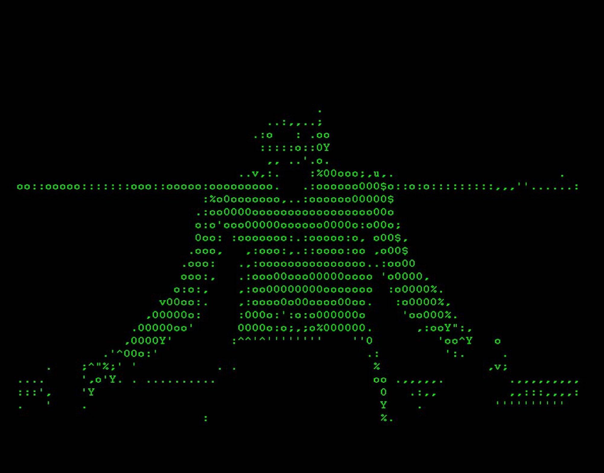 Vuk Cosic, Raging Bull, software, computer, screen, programming Luka Frelih,  1999